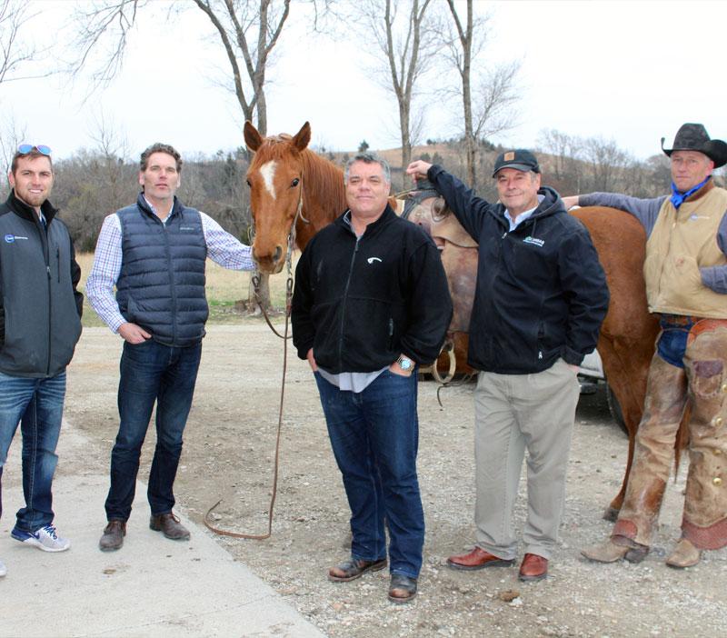 Team-Horse-Pic